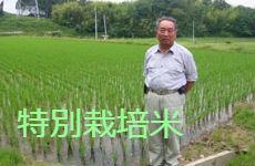 お米の通販・特別栽培米